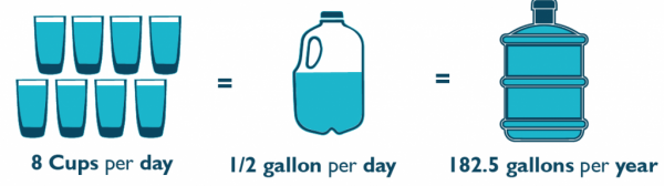 The average person drinks 8 cups per day, equaling to 1/2 gallon per day and 182.5 gallons per year.