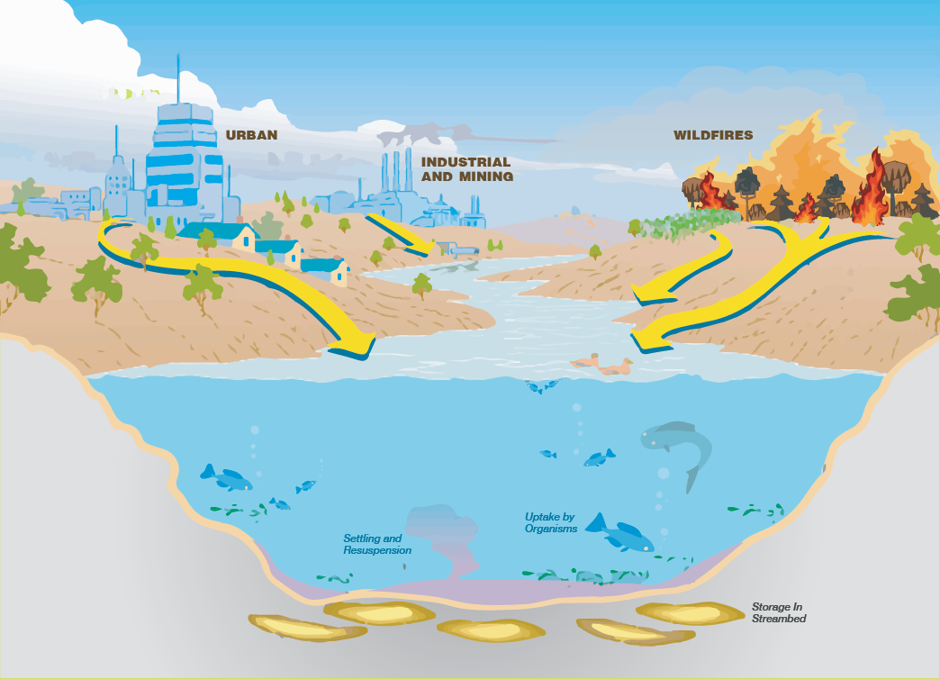 How do contaminants get into our water?